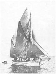 Alvilde 1897